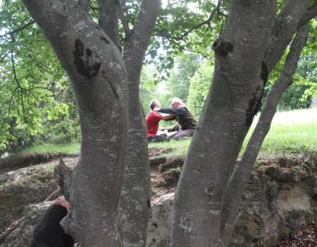 En Alemania :   A WILD BREEZE OF STILLNESS für Naturkinder von 0 – 99 Jahren – Ein innerer und äußerer Tanz in der Natur 21. – 26. August 2018 Donautal/ Schwäb. Alb