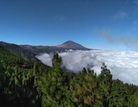 Retiros en la Naturaleza – Entrenamiento en presencia, comunicación sincera y encuentros en profundidad 29.01. – 04.02.2018 y 02.04. – 08.04.2018 en Tenerife