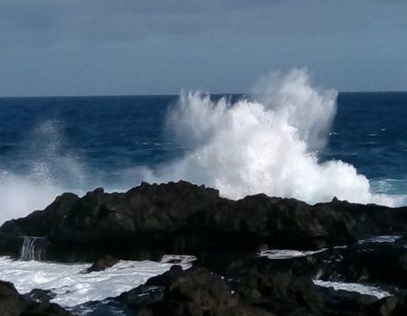 Surfeando la OLA de la vida – Danza Meditación ; un domingo al mes en el sur de Tenerife